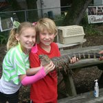 Kids are allowed hands on with alligators!