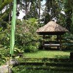 hut in the garden.