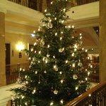 4 story christmas tree in lobby