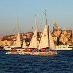 Scholtz 22 Sailing Courses
