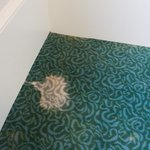 Stained carpet on 4th floor I