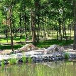 SunGarden Golf&Spa Resort woods