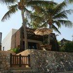 Our bungalow; Coconut palm..