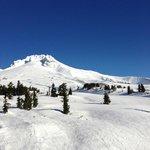 Timberline Ski Hill