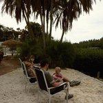 Overlooking Heron Lagoon