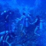 Underwater with Tom & CML Crew