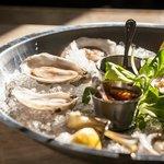 Fresh Oysters - yum!