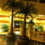Palm trees in the lobby