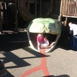 my grandkids in the giant snake on the playground