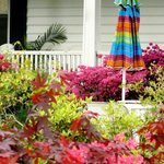 Colorful yard during summer visit