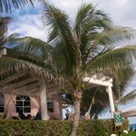 Palapa's by the Pool