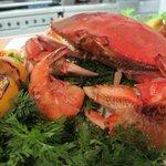 Fresh Local Crab