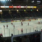 Belfast Giants vs Hull Stingrays-section U