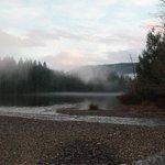 Killarny Lake in mist. We overlook Killarny Lake and Crippen Park Forest.