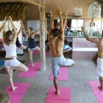 Yoga can be organized.....Please ask 4 person min.