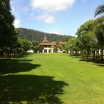 Beautiful lawns of the resort