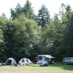 Page's Resort: Campground on five acre property
