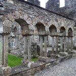 Mellifont ruins