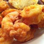 Shrimp as big as your thumb!!