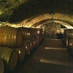 Winery tour: Underground barrel room.