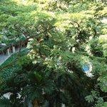 Deluxe Garden Room (Garden Wing)