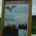 Description of cave