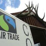 always fair trade