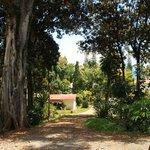 Gîte - Vue du bungalow