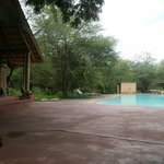 Bar & Pool