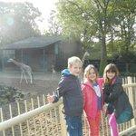 Samen bij de giraffen