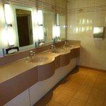 Public ladies toilets near eception...very clean