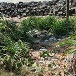 Müll am Odayam-Beach