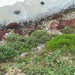 Müll in den Klippen zum Hauptstrand