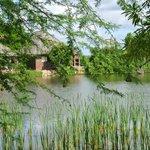 Schöner See in dem auch geangelt werden darf