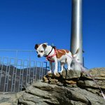 January 2013:Tilly's at the top of Chimney Rock