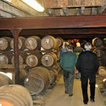 Store of Whisky in barrels