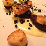 Seared scallops with black pudding and celeriac purée