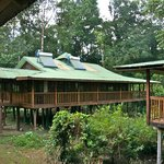 Lodge rooms at Selva Verde