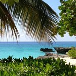 Smiths Cove near downtown. You will fall in love with Cayman! All it takes is once!