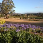 Relaxing country view from Cottage verandah
