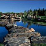 Fox Harb'r Golf Course