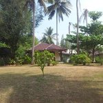 Garden and bungalow 9