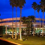 Photo of Sheraton Tampa Brandon Hotel