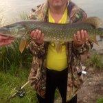 Wee fish at loch awe