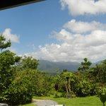 Uitzicht vanaf de veranda.