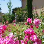 Jardin La Bastide d'Iris - Hôtel**** en Ardèche