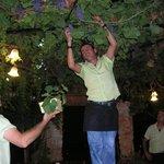 Druer i taket på Cactus