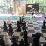 Shuffleboard or Chess anyone
