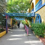 Photo of Divi Flamingo Beach Resort and Casino