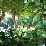 Patong Resort Hotel ala nuova